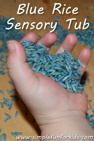 Blue Rice Sensory Tub