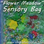 We turned our sensory tub into a Flower Meadow Sensory Bag for no-mess sensory fun wherever we go!