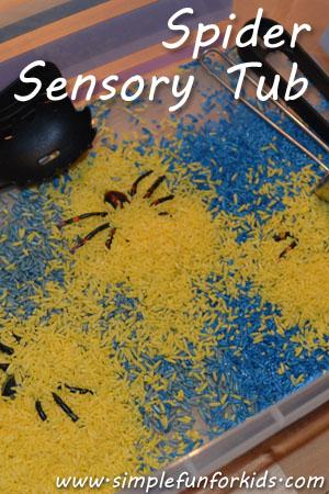 Spider Sensory Tub