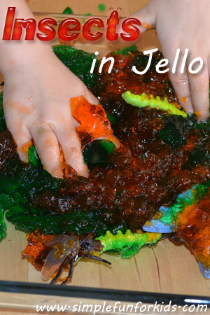 Sensory toddler fun with plastic insects stuck in jello!