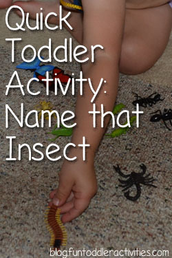 Quick Toddler Activity: Name that Insect