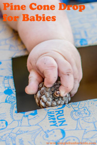 Baby Activities: Fun with a simple homemade pine cone drop activity!
