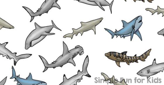 graphic regarding Shark Printable named Shark I Spy Video game - Straightforward Enjoyable for Children