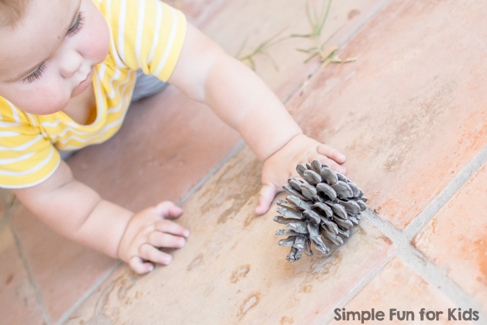 Sensory Activities for Kids: Nature Exploration on a Mirror - a new perspective on natural items!