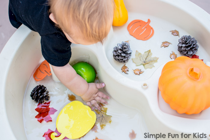 Sensory Activities for Kids: Wet and Dry Fall Sensory Table - fun with water and fall themed items!