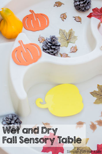 Wet and Dry Fall Sensory Table