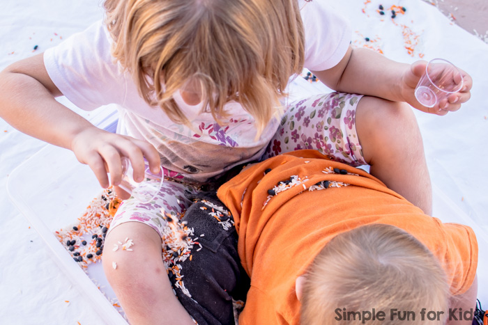 This beautiful Halloween Sensory Bin with rice and beans wasn't meant as a sibling activity, but it turned out to be great fun for both my preschooler and my toddler!