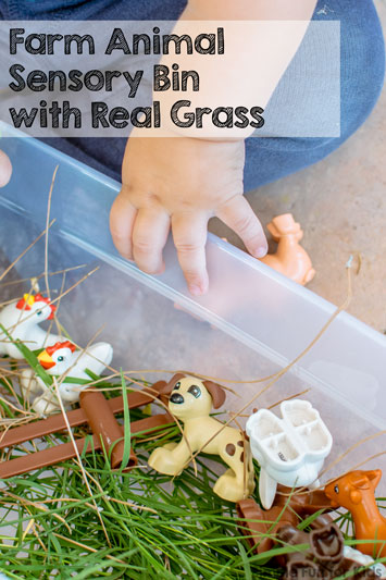 Farm Animal Sensory Bin with Real Grass