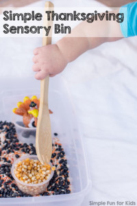 Get your little one in the mood for Thanksgiving with this cute and simple Thanksgiving Sensory Bin! Perfect for toddlers, and my older preschooler still loved the feel of the bean, rice, and corn mixture in her hands!