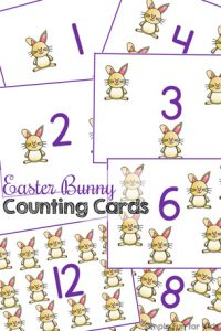 Practice counting and 1:1 correspondence with these cute printable Easter Bunny Counting Cards! My toddler loves them, but they're also great for preschoolers and kindergarteners - anyone who's just learning to count.