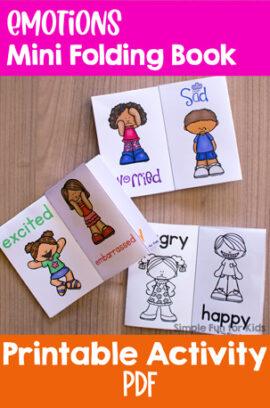 Emotions Mini Folding Book