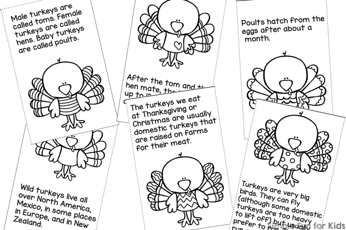 Turkey Facts for Kids Mini Folding Coloring Book - Simple Fun for Kids