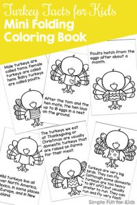 learn and have fun with this cute turkey facts for kids mini folding coloring book - Printable Books For Kids
