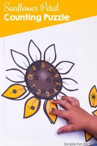 Practice counting and number recognition with this cute Sunflower Petal Counting Puzzle! Great for preschoolers and kindergarteners and part of the 7 Days of Sunflower Printables for Kids series (day 1).