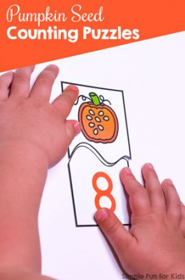 Pumpkin Seed Counting Puzzles