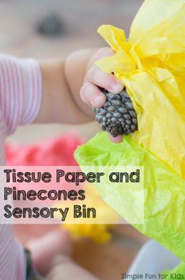 Tissue Paper and Pine Cones Sensory Bin